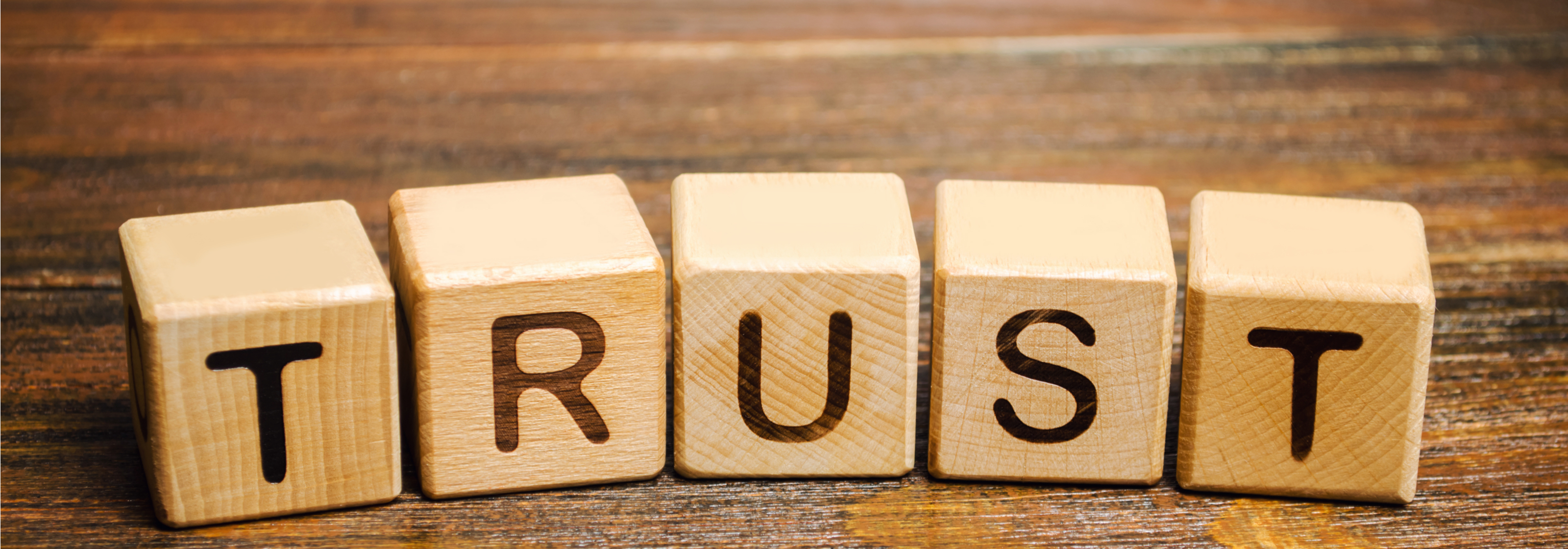 Building A Team Based on Trust